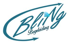 Blingbegeleiding Logo